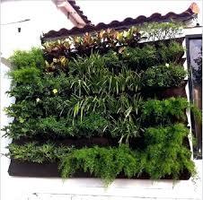 hanging vegetable garden u2013 salmaun me