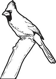 free printable cardinal coloring kids