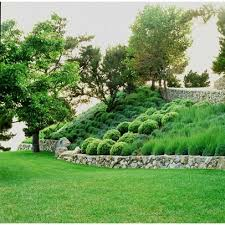 Landscaping Ideas Hillside Backyard 25 Unique Steep Hillside Landscaping Ideas On Pinterest