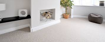 Carpet In Living Room by Carpet Cleaning Deodorizing Steam Grand Forks Nd