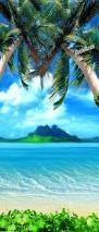 palm beach 1 piece peel stick wall door mural tropical beach 1 piece peel stick wall door mural
