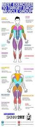 What Do Bench Presses Work Out Best 25 Gym Motivation Ideas On Pinterest Workout Inspiration