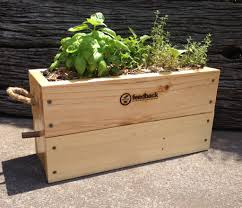 market stalls feedback organic recovery
