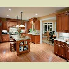 Oak Cabinets Kitchen Design 10 Best Kitchen Ideas Images On Pinterest Kitchen Countertop