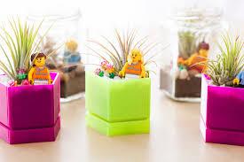 best desk plants no light hostgarcia