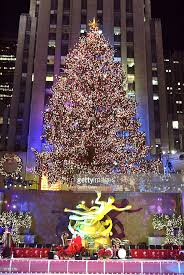 tree lighting new york city rainforest islands ferry