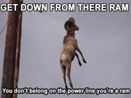 Get Down Meme - meme classics get down from there ram