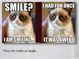 Success Cat Meme - leveraging visual assets for social media success