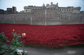 britain honors world war i dead with poppy tributes concerts la