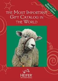 gifts to give the from the of honor 108 best heifer gift catalog images on farm animals