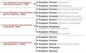 a biological classification biology4isc