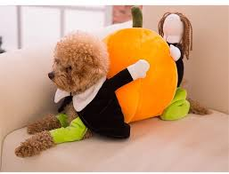 Cute Small Dog Halloween Costumes Aliexpress Buy Funny Pumpkin Dog Costumes Halloween