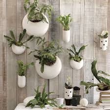 planters that hang on the wall shane powers ceramic wall planters west elm