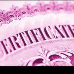 wedding planner certification wedding planner certification template template and template
