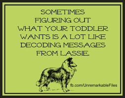 Toddler Memes - our 6 favourite toddler memes that nailed the reality of having one