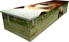 cardboard coffin creative coffins beautiful cardboard coffins
