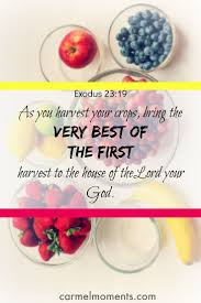 283 best eating the bible images on pinterest bible verses