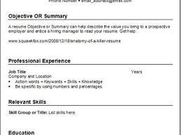 Resume Spelling Accent Best Spelling Resume Ideas Simple Resume Office Templates