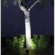 solar lights for trees solidaria garden