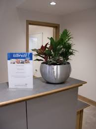 Plant For Desk Reception Plants For Hospice Gp Plantscape