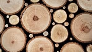 rustic wood flooring rustic river hardwood