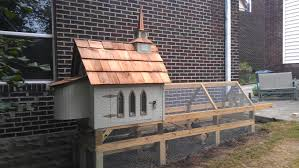small backyard chicken coop ideas with best chicken coop designs