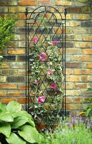 Garden Trellis Design by 15 Best Garden Trellis Ideas Images On Pinterest Trellis Ideas