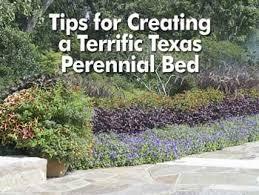 39 best garden texas perennials images on pinterest flower