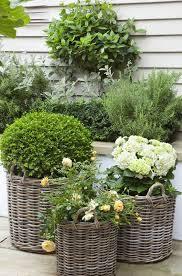 planters amazing rattan planters rattan planter baskets rattan