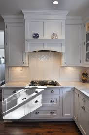 gas cooktop with under cabinet lighting built in hood new house
