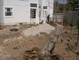 What Does A Landscaper Do by What Is Landscaping Like Is It Like Work Steve Snedeker U0027s