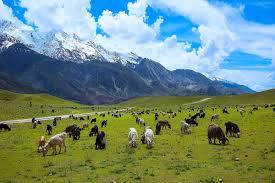 national parks images Chitral national park wikipedia jpg