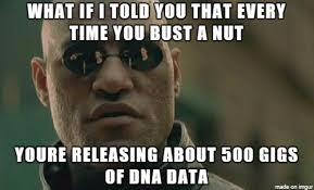 The More You Know Meme - the more you know meme on imgur