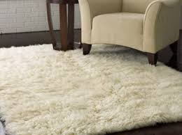 Sale On Area Rugs Rugs Area Rugs For Sale Luxedecor