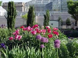 Us Botanical Gardens Dc Media Press Gallery United States Botanic Garden