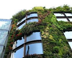 green design homes building green homes ideas green design ideas inspired by nature 2