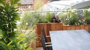 Rooftop Garden Design Roof Garden Design London Garden Club London