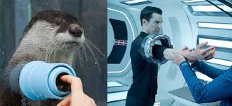 Cumberbatch Otter Meme - are we still doing benedict cumberbatch looks like an otter imgur