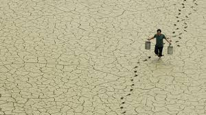 writing lab reports and scientific papers the 3 of scientific papers that deny climate change are all a farmer walks on a dried up pond on the outskirts of baokang central
