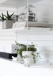 decordots decorating with plants