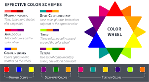 an asset manager u0027s guide selecting a color palette articles