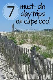 7 must do day trips on cape cod cod distance and destinations