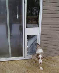 Vinyl Patio Pet Door The Maxseal Patio Pet Door Features Dual Paned Glass And Energy