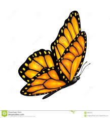 flying butterfly stock vector image 38959015