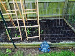 garden u2013 pecan pies u0026 tomato tarts