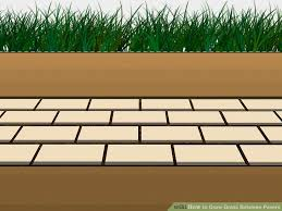 Laying Patio Slabs On Grass How To Grow Grass Between Pavers 6 Steps With Pictures