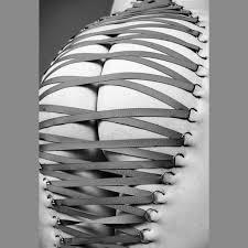 Back Corset Piercing Images Corset Piercings Artist Magazine