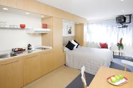 apartment adorable light brown small studio apartment with