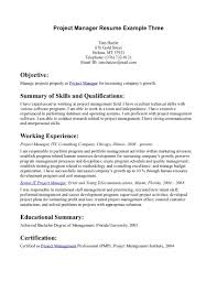 Example Of Project Manager Resume 100 Sample Resume For Assistant Project Manager Construction