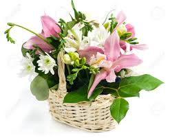 basket of flowers basket of flowers orchid and freesia isolated on white background